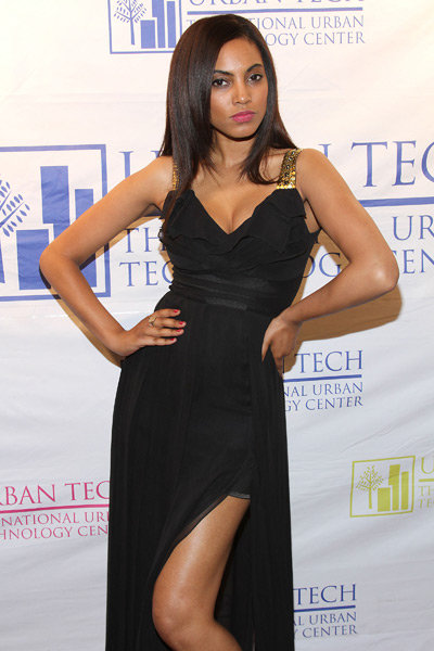 Ariel Meredith attends the 2013 Urban Tech Gala Dinner in NYC :: Matthew Eisman/WireImage