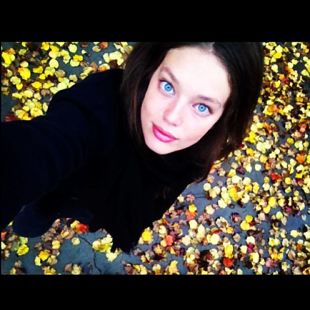 @emilydidonato1: Good morning NY! Love the colors of fall.