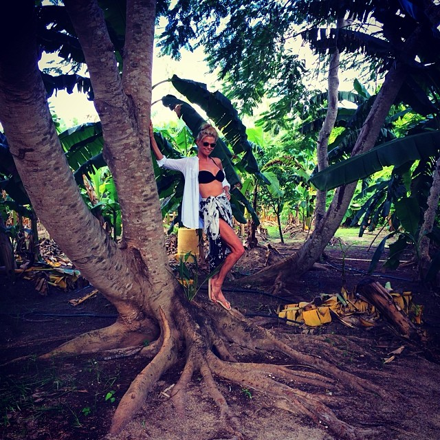 @christiebrinkley: I love 1940 Hurricane movies that take place in polynesia .. The Plantation makes I feel like a glamorous wahine from one of those great films! #exotic#island