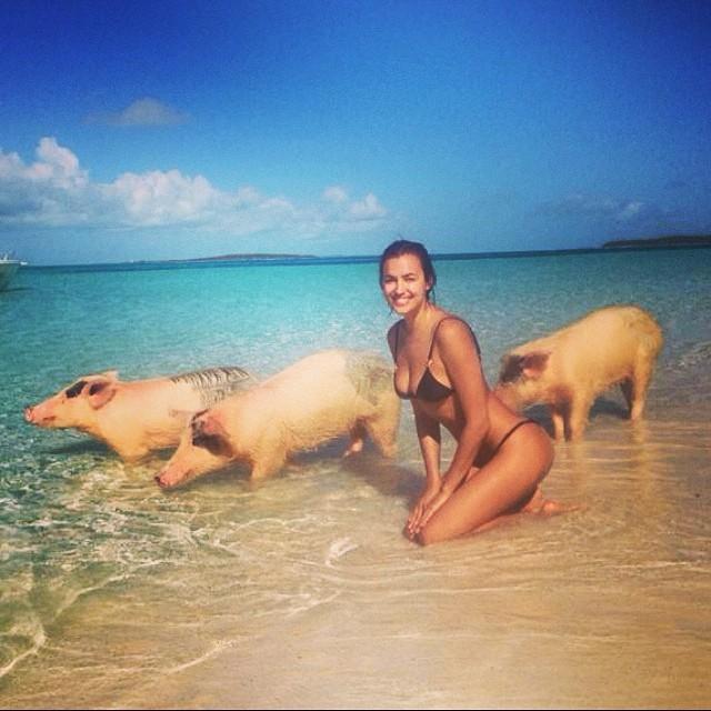 @irinashayk: Iri and swimming pigs#funday#ocean safari