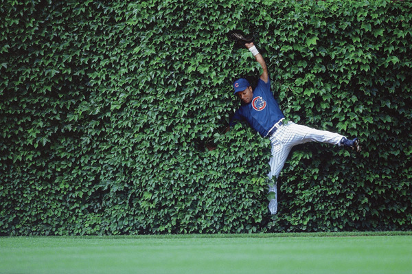 Moises Alou collides with Wrigley's famous ivy wall. (Damian Strohmeyer/SI)