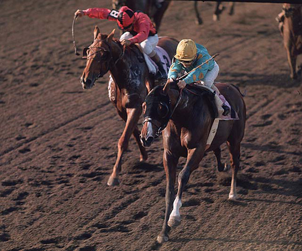 Northern Dancer and Willie Shoemaker  :: Neil Leifer/SI