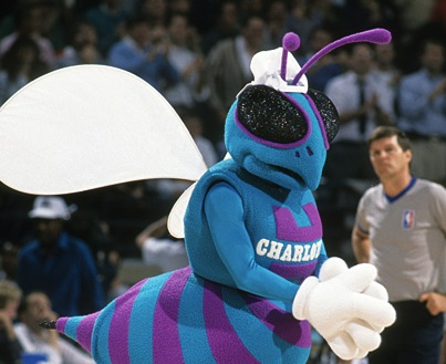Hugo the Hornet :: David E. Klutho/SI