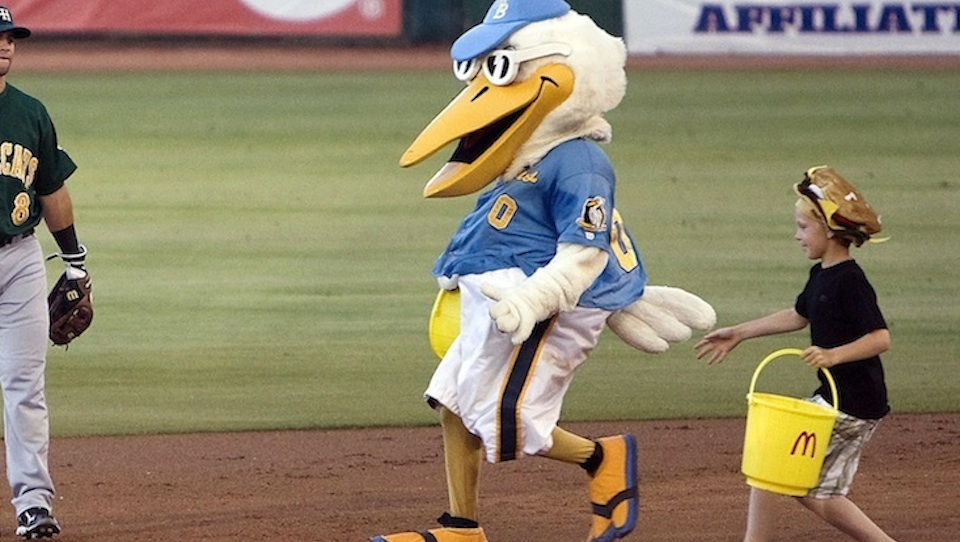 There's no word yet on whether Pelicans' mascot Splash, pictured, or the aptly named Deuce The Dog will undergo similar mid-game examinations