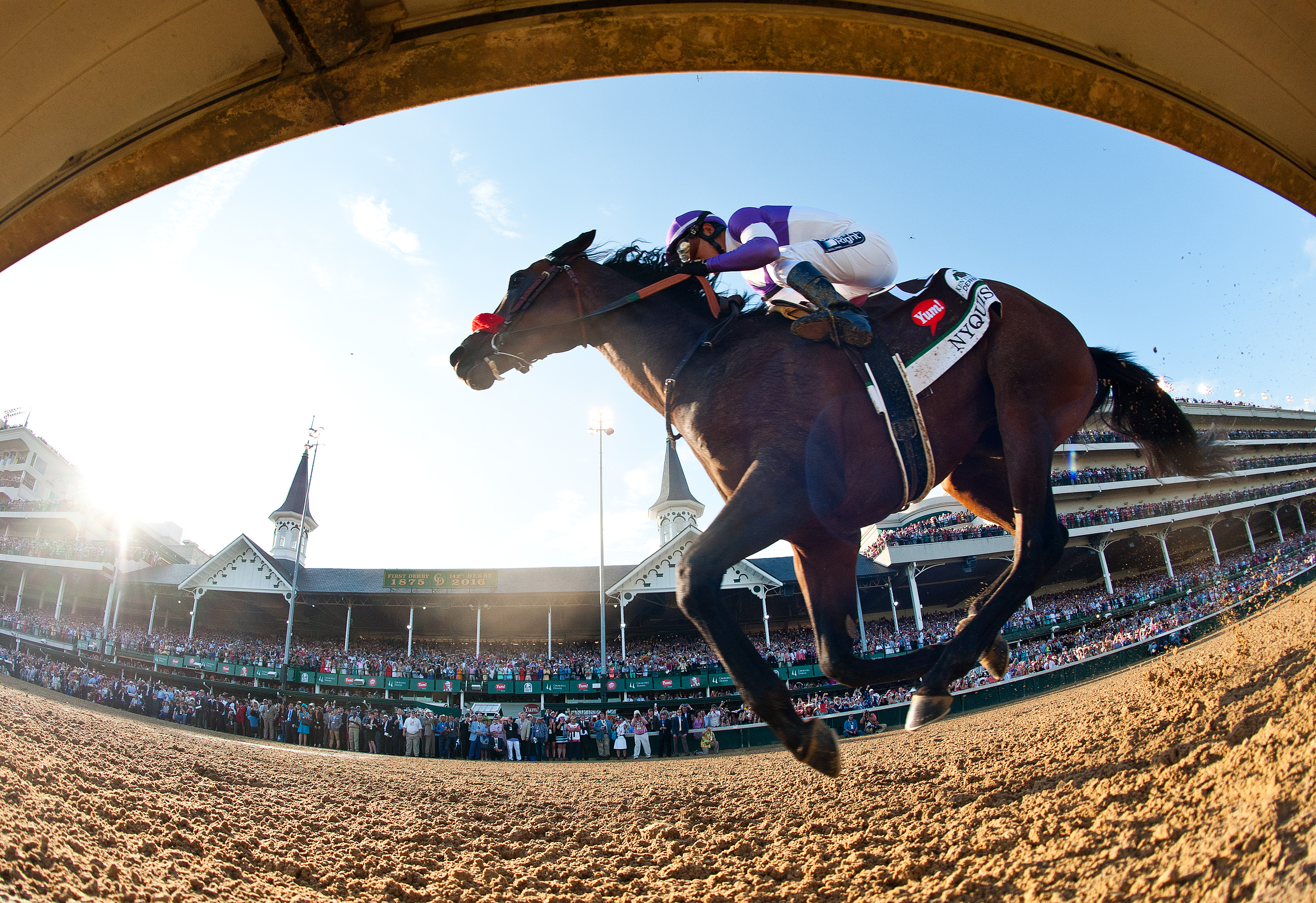 Nyquist paid $6.60, $4.80 and $3.60 as the 2-1 favorite in the field of 20 horses.