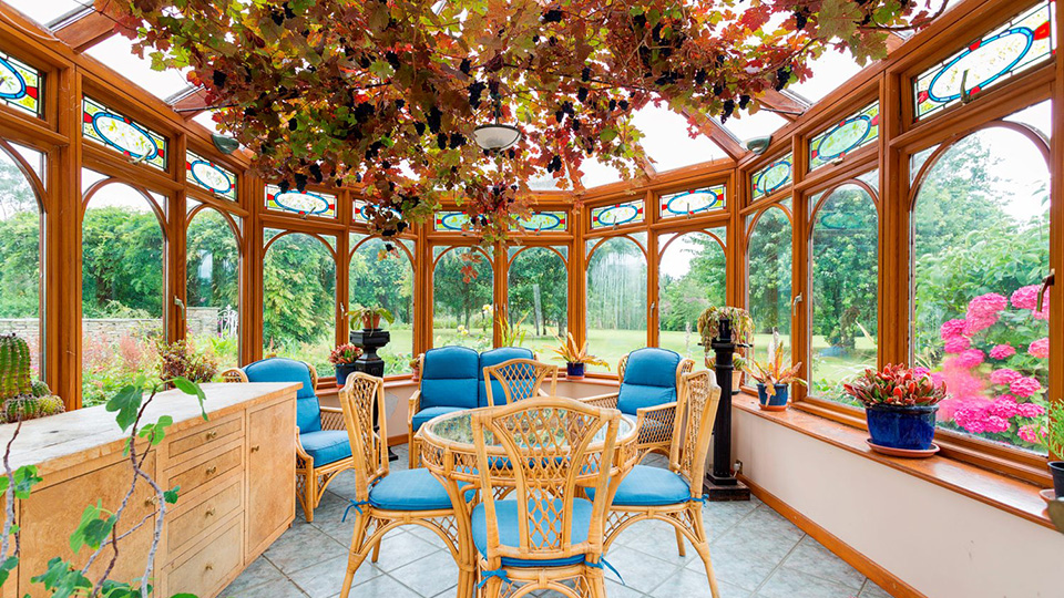 The sunroom, dubbed the '19th hole' of the property, with home-grown grapes.