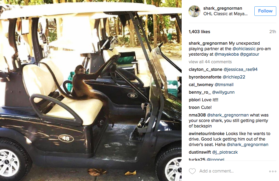 Greg Norman's personal driver at the OHL Classic at Mayakoba.