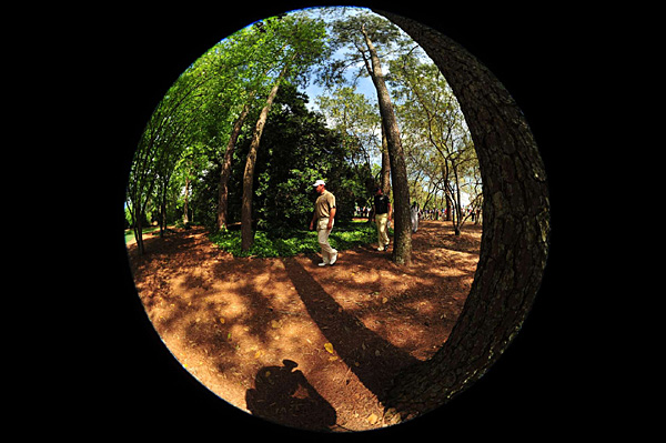 Westwood is trying to win his first major. (More fish-eye views of Augusta National)