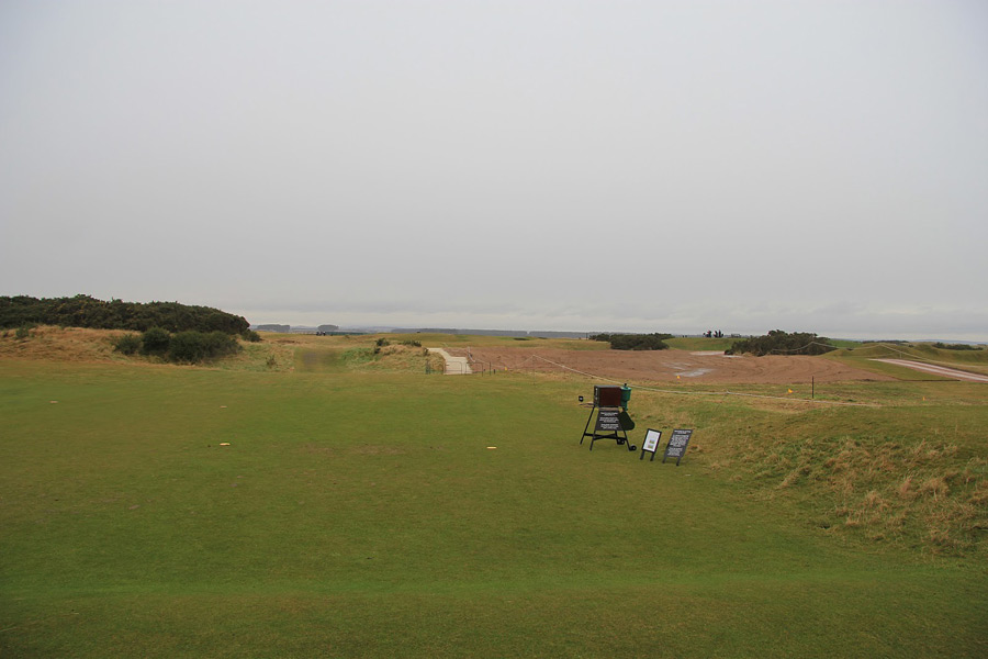 Gorse was removed from the front of the seventh tee.