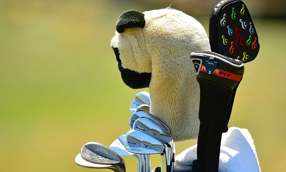 Danny Lee's RAZR X Muscleback irons are guarded by a pug.