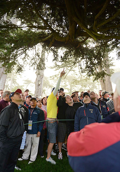 Mickelson's tee shot on the ninth hole, his first of the day, got stuck in a tree and never came down.