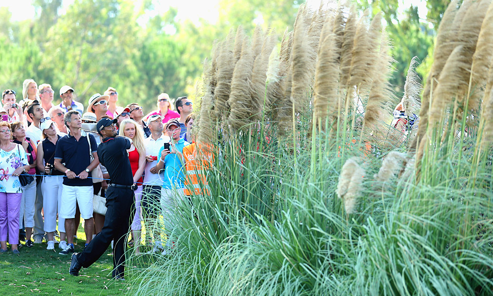 Tiger Woods lost his opening match to Charl Schwartzel. The event's format is medal match play, meaning two players compete head-to-head, and the winner is determined by total score for 72 holes.