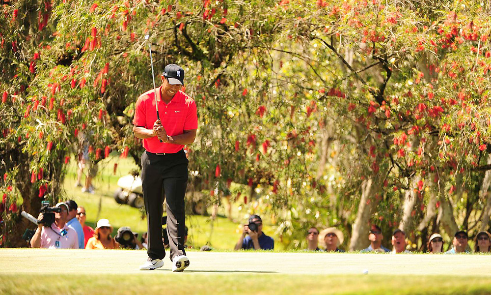 Woods made a bogey on the second hole and briefly led by only one shot.