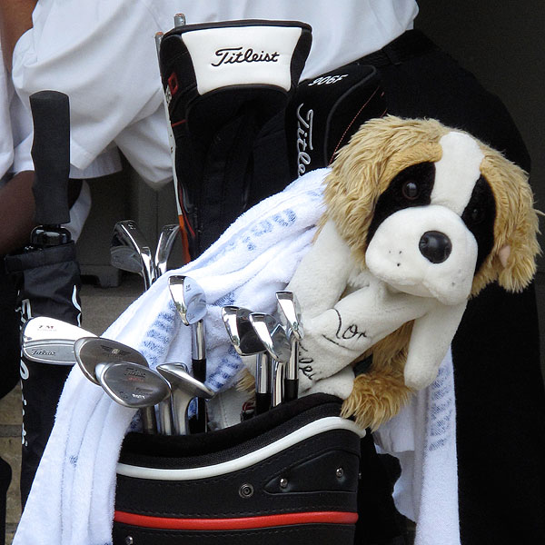 has to have Titleist headcovers, but he keeps his lucky St. Bernard as well.