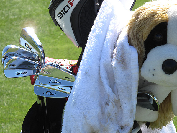 Rory McIlroy depends on a St. Bernard to guard his Titleist 710 MB Forged irons.
