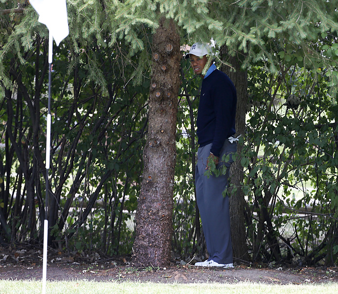 Woods tied for 11th at the BMW Championship and also found himself at the center of another rules controversy. He was assessed a two-stroke penalty after the second round when video replay showed his ball moved when he attempted to remove a nearby twig. Woods was standing in the trees near the first green (pictured) when the infraction occurred. Woods insisted the video was not conclusive, but the penalty stuck. He went on to finish seven shots behind winner Zach Johnson.
