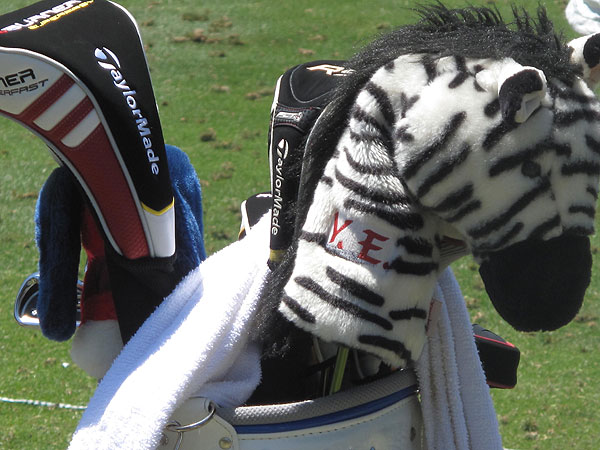 zebra headcover goes along with a common trend among players to use exotic animals.