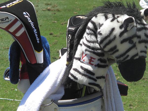zebra headcover.
