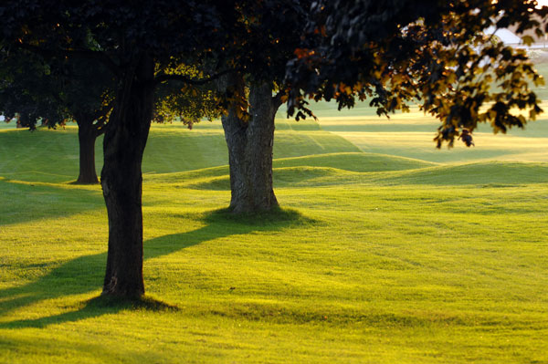No. 12                     Par 5                     593 yards                                          • See satellite photos of Oakland Hills in our Course Finder