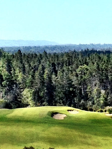 """""""@eamonlynch: My favorite hole in America. No. 14 at Bandon Trails. (biting lip)."""""""