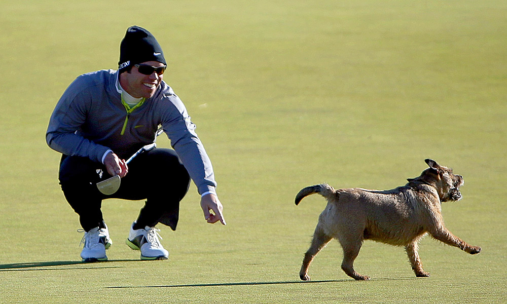 Eventually, a spectator caught the dog and returned the ball to its rightful owner. Casey was not penalized as a result.
