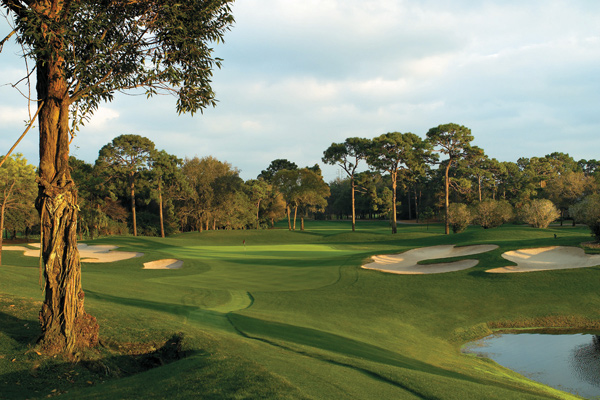 Palm Harbor, Fla.                       Green fees: $150-$250 (Copperhead); $130-$230 (Island)                       727-942-2000, innisbrookgolfresort.comInnisbrook Resort and Golf Club                       Palm Harbor, Fla.                       Green fees: $150-$250 (Copperhead); $130-$230 (Island)                       727-942-2000, innisbrookgolfresort.com