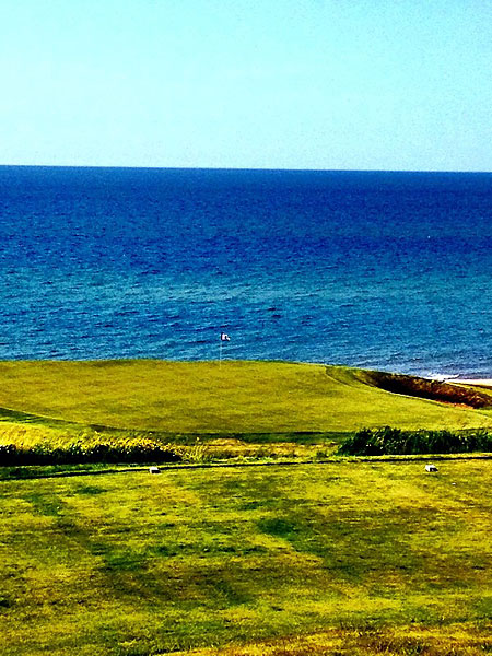 """@eamonlynch: The Danny DeVito of @cabotlinks: short and nasty. 100 yards."""