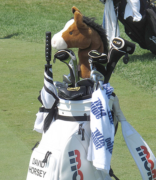 choice of headcover was quite easy.