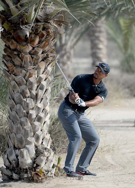 Tiger Woods prepares to play his shot on the par four 14th hole during the second round of the Omega Dubai Desert Classic.