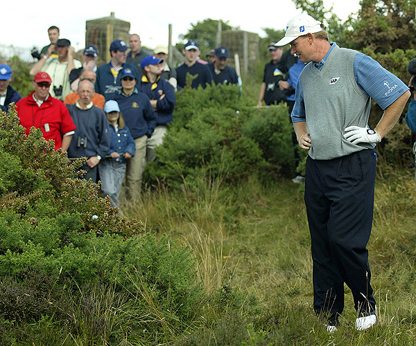 Not for the Faint of Heart                       The classic links courses that host the British Open are full of wind-swept sand dunes and all sorts of nasty weather and vegetation — gorse, heather and knee-high grasses. Here are some of the harrowing shots that players have faced in recent British Opens.                                              Ernie Els found his ball suspended in the branches of a gorse bush at Royal Troon in 2004.