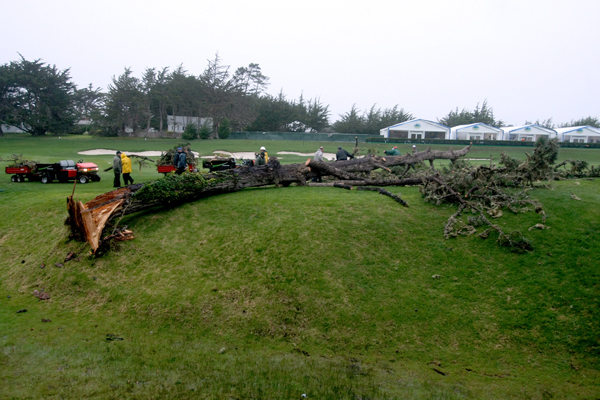 Storms cancel final round at Pebble Beach                     Heavy rains and fierce winds stopped play at Pebble Beach on Sunday and made it impossible to finish the tournament on Monday. Dustin Johnson, the leader after Saturday's round, was declared the winner. This tree on the third fairway was knocked down by the storms.
