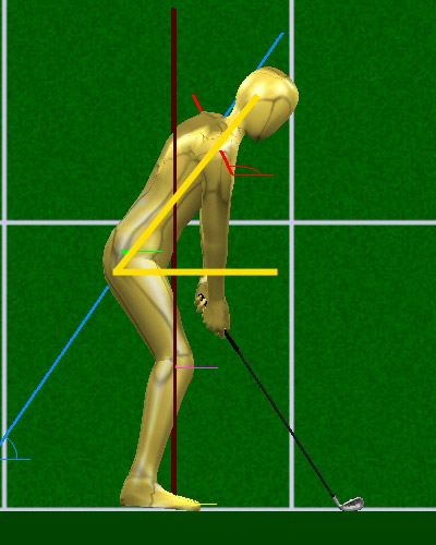 Motion Golf's swing analyzer shows that most Tour pros tilt forward 55° to 60° at address.                                               Mitchell Spearman talks more about balance in this video on MotionGolf.com. Also, download a 3-D Swing Analyzer of Spearman's swing to get a closer look.