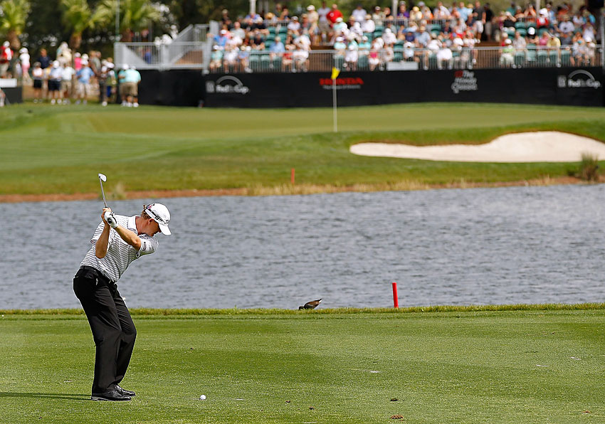 Tom Gillis fired a bogey-free 64 to tie Rose at eight under.