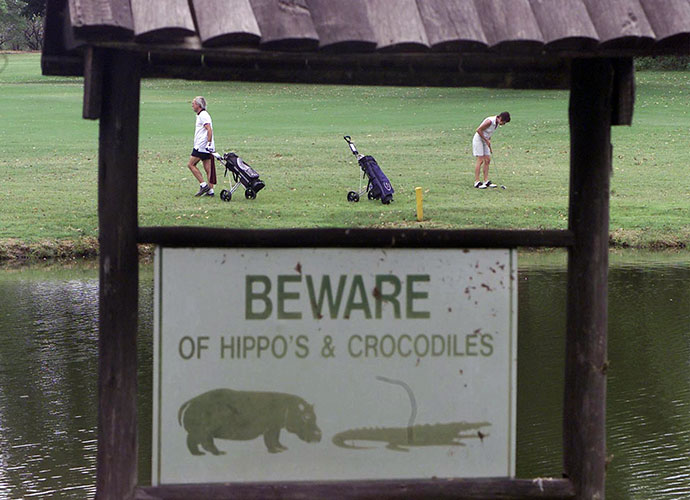 Hans Merensky Golf Course, South Africa: When people here refer to a scary 15-footer, odds are they're not describing a lengthy putt. Cut through Kruger National Park, this course counts giant crocodiles among its hazards. As you go about your round, look for baby springbok dangling from the trees. Leopards leave them hanging. Hippos yawn in the greenside ponds. Though injuries are rare, fatalities have happened. In 1998, a bull elephant stomped to death a golfer on the 16th green.