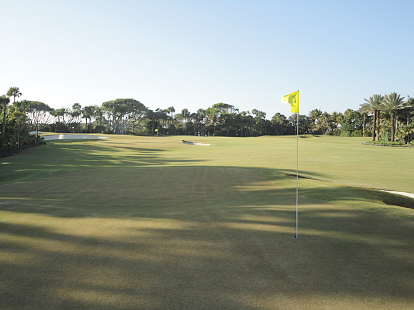 Shorter cuts with firm and fast conditions allow the practice of many different shots, including bump and runs, traditional and non-traditional pitches and putting from off the green; higher cuts with softer conditions allow for more aerial shots from tough lies.