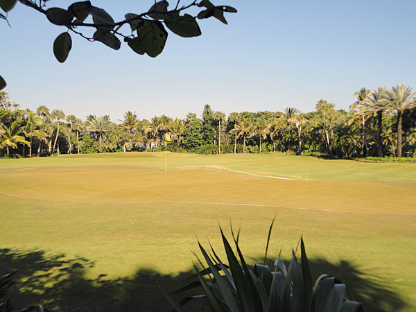 The Jupiter Island practice course was designed and built to take advantage of a surplus of unused brackish water.