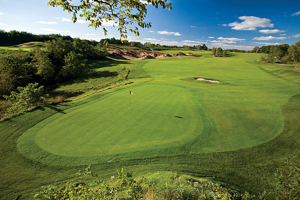 5. Wild Rock Golf Club at the Wilderness Hotel & Golf Resort                       Wisconsin Dells, Wisc.                       7,418 yards, par 72; Green fees: $60-99;                       608-253-4653; wildrockgolf.com                                              The call of the wild begins at the first tee of this rugged,                       raucous ride by Michael Hurdzan and Dana Fry, who created                       our top new public course of 2006 at nearby Erin Hills. A rocky                       stream bisects the second-shot landing area at the 559-yard 1st,                       while overly bold approach shots will find a lake behind the                       green. The risk/reward theme continues throughout the round.                       Wide fairways are framed by trees and dotted with sand and                       gravel mounds, but the holes you'll remember are the downhill,                       588-yard, par-5 6th, which takes in views of the Baraboo Bluffs,                       and the 179-yard, par-3 15th, which demands a full-blooded                       carry over an old stone quarry. By round's end, it's clear that                       the course couldn't be more perfectly named.