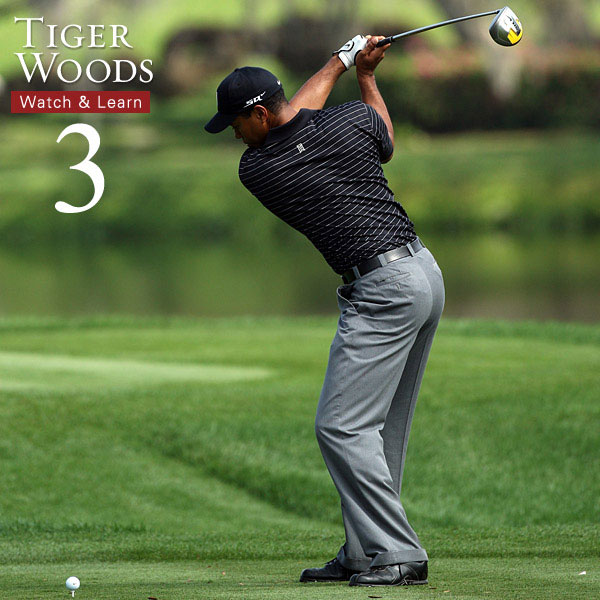 This is Tiger's squat. Notice how he keeps his torso turned by the same amount as he starts to pivot his hips toward the target, which sends his torque sky-high.