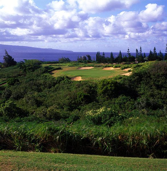 Kapalua Resort (Plantation) Kapalua, Maui, Hawaii; Bill Coore/Ben Crenshaw (1991) -- $178-$278, golfatkapalua.com