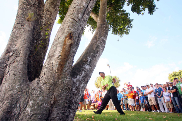 On 17, Woods found tree trouble and made his only bogey of the day.