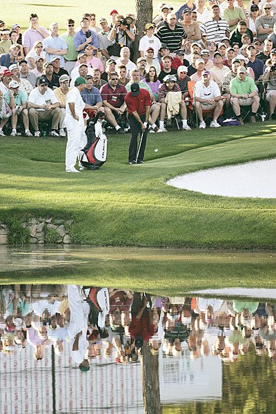 Tiger's Stop, Roll & Drop                      Year: 2005, final round                     The hole: 16th                     Degree of difficulty: ***1/2                                          THE SHOT: Trailing Chris DiMarco, Woods knocked his tee shot over the green, where it came to rest against the collar of the first cut of rough. After surveying the situation, he opted for a low, spinning pitch, landing the ball well above the hole. The ball bit and then trickled down to the cup, hanging briefly on the lip before dropping in. The crowd, and Tiger, erupted. Woods beat DiMarco in a playoff.