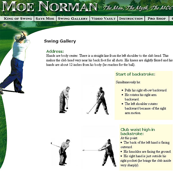 "2. Moe Norman                       	Canada's golfing savant invented a swing so ugly that it became a selling point. Packaged as ""Natural Golf,"" Norman's straight-armed, flat-footed, single-axis swipe at the ball has won thousands of converts, but Tour players would sooner golf in tights than take on Tiger and Phil with such a nerdy swing."