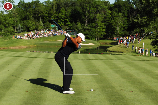 This is the best transition from backswing to downswing in golf! The core of Tiger's body is driving in a counterclockwise direction while his arms and the club are falling perfectly on plane.