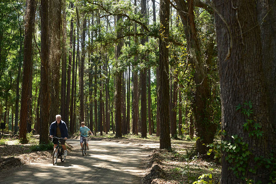 Family time and riding a bicycle through the 605-acre Sea Pines Forest Reserve is a very popular trip for young and old.  As you ride or stroll through the preserve (Sea Pines is the golf community and home of the Heritage), keep your eyes and ears open for an abundance of wildlife, from alligators (I spotted 14 while I was there) to owls, colorful native water birds, wildflowers and a 4,000-year-old Indian Shell Ring, which is listed on the National Register of Historic Places. Bikes are not permitted on the trails themselves, but you can ride down the rice dike and the roads leading into and out of the preserve. For more information visit exploreseapines.com
