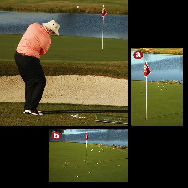 "CHECK YOUR SPIN-ABILITY                       Take my ""Clean Contact"" test to see if your swing is geared for max spin so you can focus on the other two backspin factors.                                              Bring a nylon hitting mat to the practice green (details at pelzgolf.com/backspin) and set up 30 yards from the pin. With a clean wedge, pitch a dozen urethane-covered balls off the mat, landing each shot on the green. The mat allows you to produce max spin (no grass/moisture possible between clubface/ball). Next, pitch the same dozen balls from good lies in the grass and compare the roll-out patterns. If the shots from grass rolled farther, you're catching too much grass between the face and the ball and losing spin. You need to improve your swing before addressing the other two spin factors.                                              A. Poor contact = more roll.                        B. Good contact = less roll."