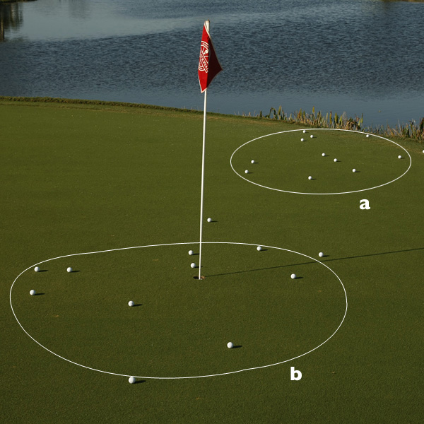 TAKE THE SURLYN TEST!                       If you're not convinced Surlyn limits your ability to stop short-game shots, here's how to prove it to yourself. Get a dozen each new Surlyn and urethane balls, and hit wedge shots to a tight pin from a nylon mat (so you're guaranteed clean/no-grass-lubricant contact). Use a new L-wedge with box grooves and make sure to fly all shots so they land in about the same area.                                              You'll see the difference in backspin between the two ball types clearly in their roll-out patterns. If you don't, then there's something wrong with your swing.                       A. Surlyn group                       B. Urethane group