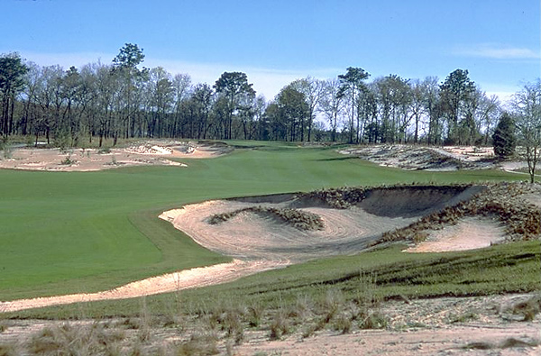 No. 18: World Woods (Pine Barrens); Brooksville, Fla.                       Designer: Tom Fazio