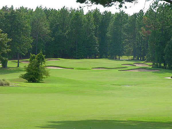 Pines Dunes -- Frankston                       Ninety miles southeast of Dallas sits this Jay Morrish design carved from a dense pine thicket that tumbles over Pinehurst-like natural sand hills. Also well done are the option-laden, short par-4s and the big, bold bunkers.                       $49-$79; 903-876-4336, pinedunes.com