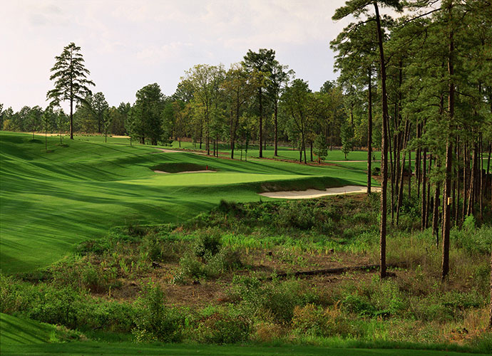 96. Pinehurst Resort No. 8 Pinehurst, N.C.; Tom Fazio (1996) -- $150-$240, pinehurst.com