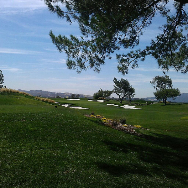 Las Positas Golf Course -- San Jose, Calif.                       Submitted by @ncga
